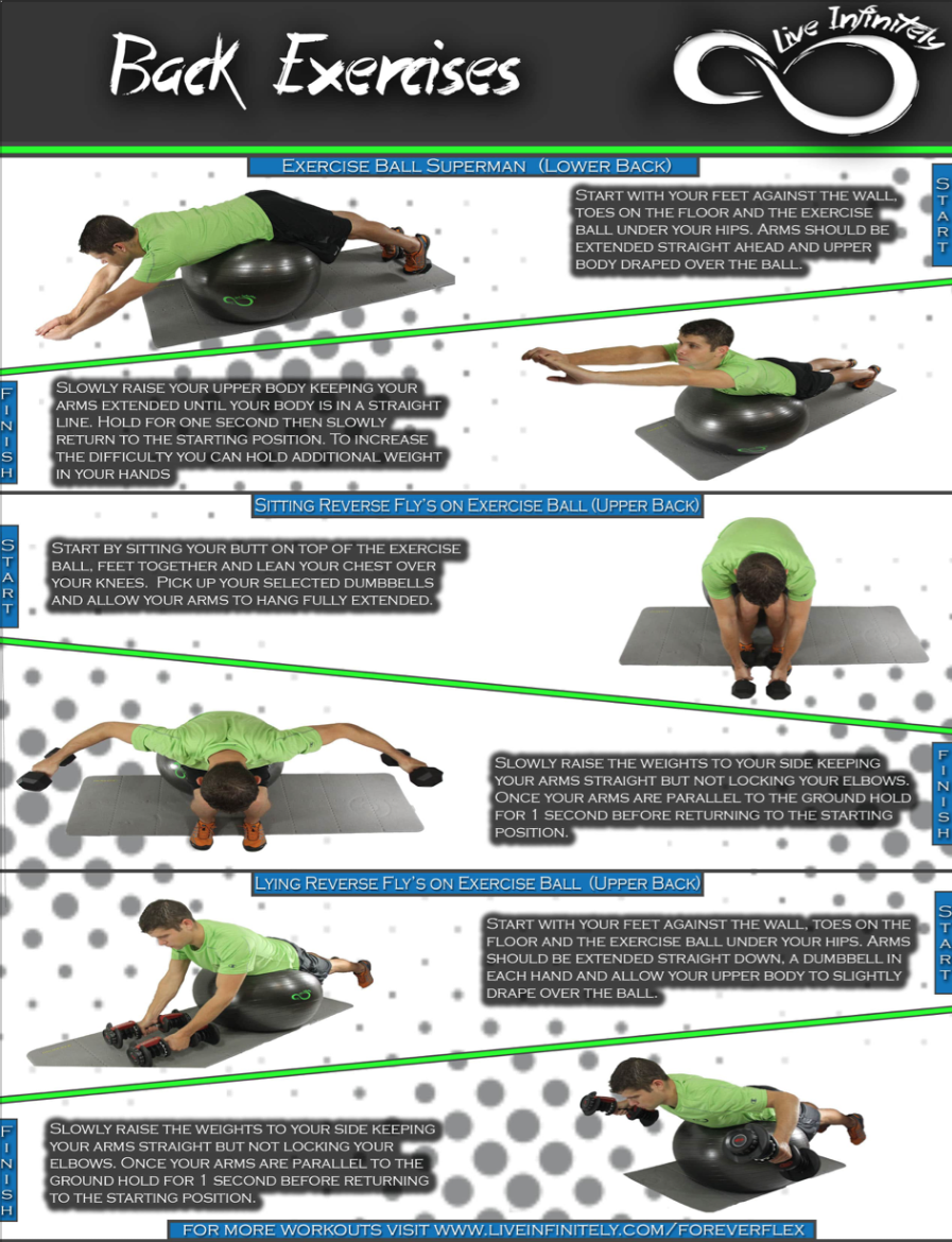 back workouts for Exercise Ball