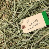 premium 1st cut timothy hay
