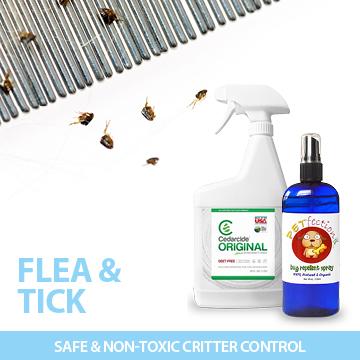 Fleas & Bugs
