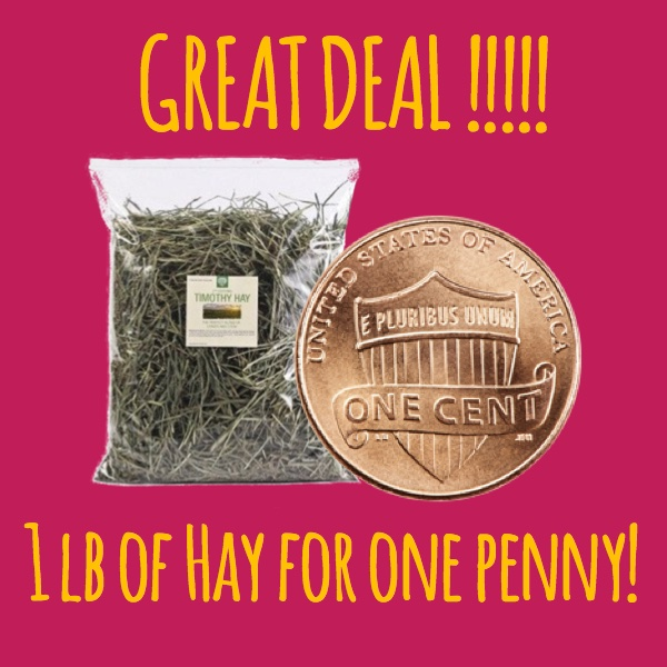 hay for a penny