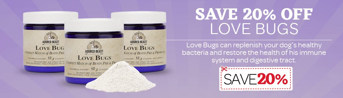 Save 20% on Love Bugs