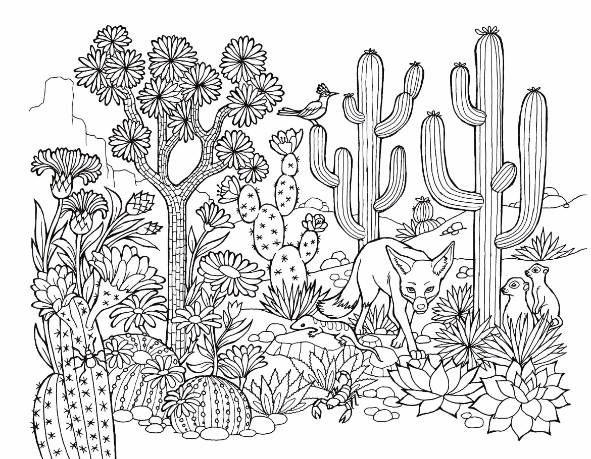 Free Coloring Page 17