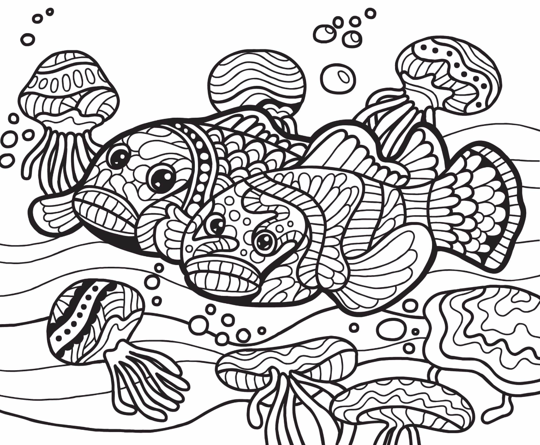 Wild Animals Drawing 2