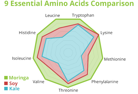 Moringa Amino Acid Comparison vs Soy and Kale