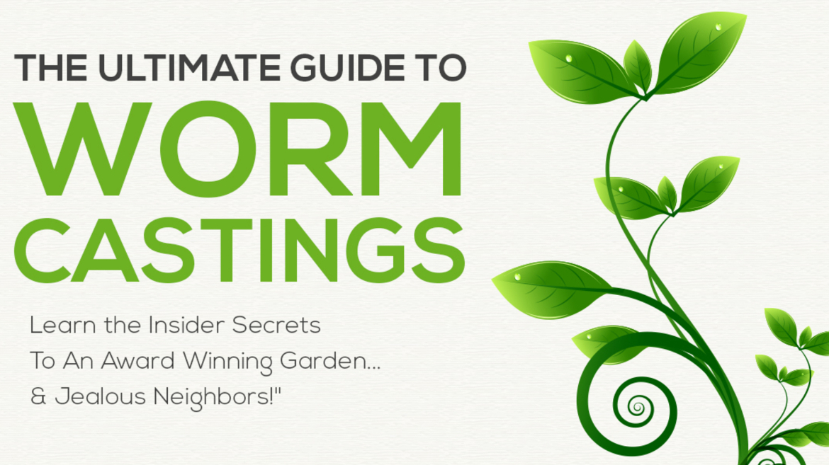 Ultimate Guide to Worm Castings