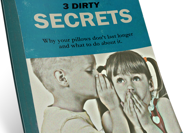 3 dirty secrets book cover