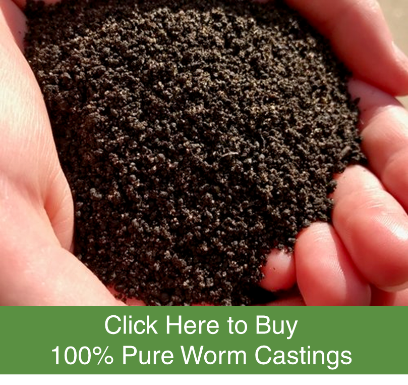 30 pound bag of worm castings