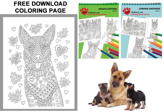 Free German Shepherd Coloring Page Lovethebreed Com