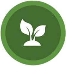Ambronite plant based
