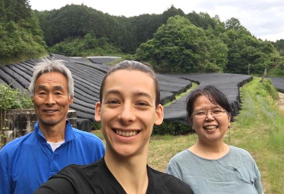 Valentin dans un champs de thé à Nara, Japon