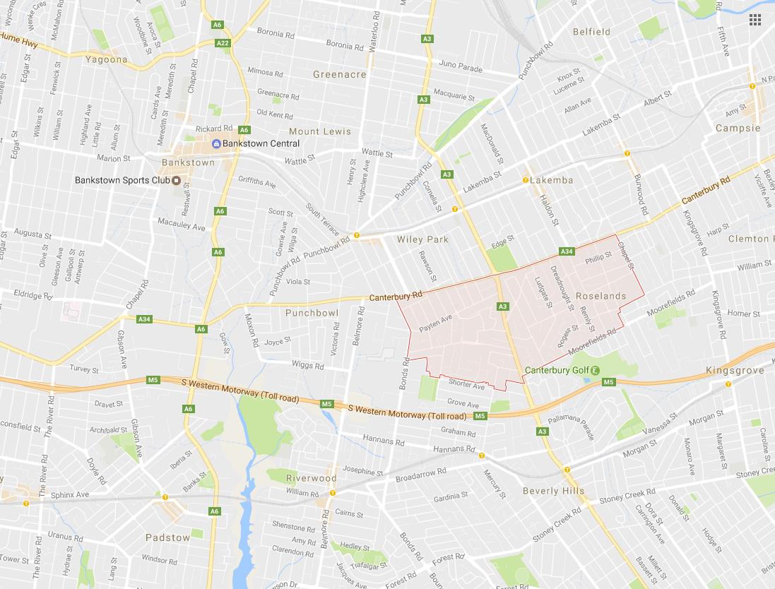 Clothesline Roselands 2196 NSW