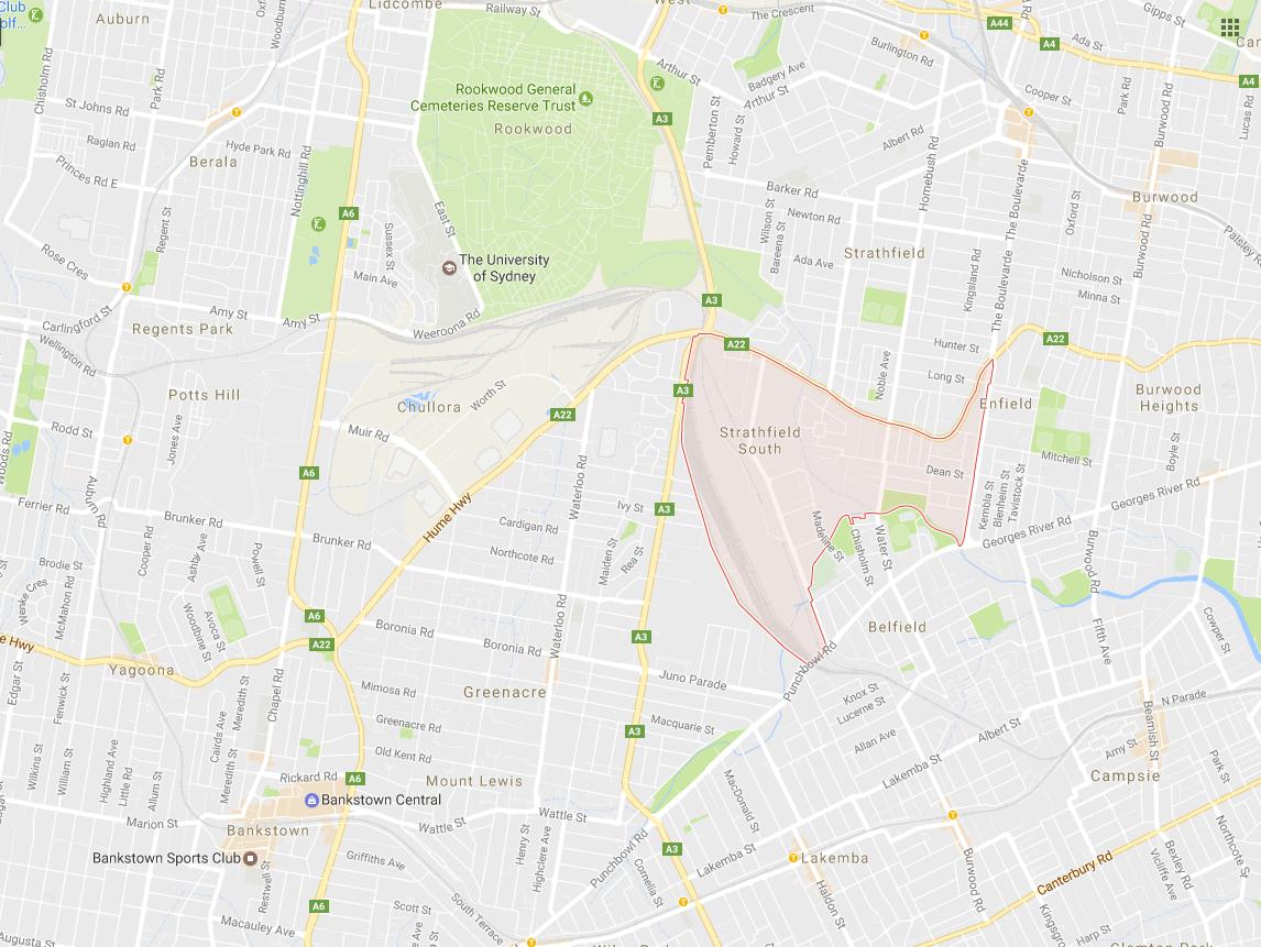 Clothesline Strathfield South 2136 NSW