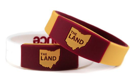The Land Band nba wristband