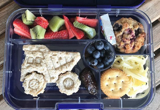 Yumbox Tapas and Lunch Punch Cutters
