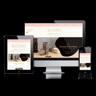 GORILLA LAB - Ecommerce Designer / Photographer / Marketer / Setup Expert - MissX Pleasure Boutique | Design & Photography