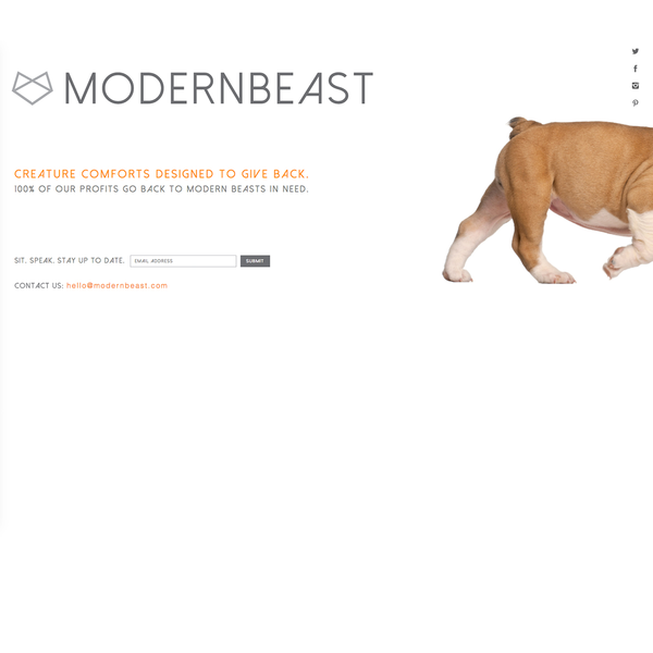 A fun splash page for a pet accessories brand (full site coming soon).
