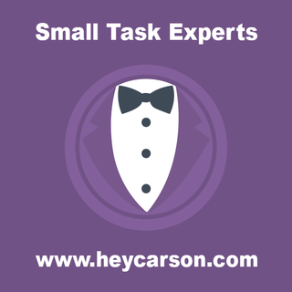 Carson eCommerce - Ecommerce Developer / Setup Expert - Unlimited Small Jobs at $249/month