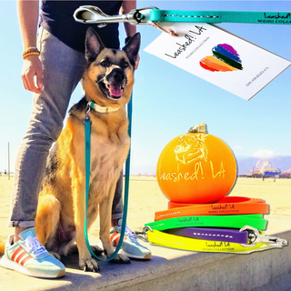 LeashedLA sells Vegan Leashes and Love for your precious pooch.