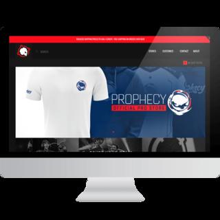 Ember Webs - Ecommerce Designer / Setup Expert -