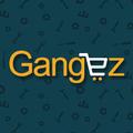 Gangez – Ecommerce Setup Expert