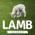 Lamb Agency – Ecommerce Designer / Setup Expert