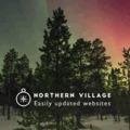 NorthernVillage Inc. – Ecommerce Setup Expert