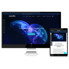 Jellyfish Art - Online Store