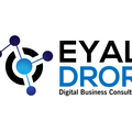 D-Media, a subsidiary of Eyal Dror Consulting Ltd – Ecommerce Setup Expert