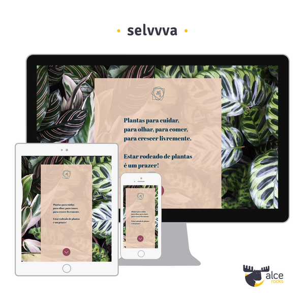 Home decor and plants boutique managed by famous architects in São Paulo (https://selvvva.com)