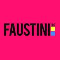 Faustini LLC – Ecommerce Marketer / Setup Expert
