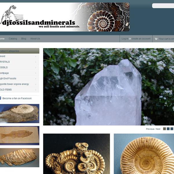 DJ Fossils and Minerals - fossils