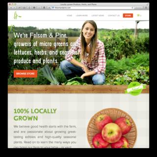 Leanometry LLC - Ecommerce Designer / Developer / Setup Expert - Custom theme for farm shares company. http://folsomandpine.com