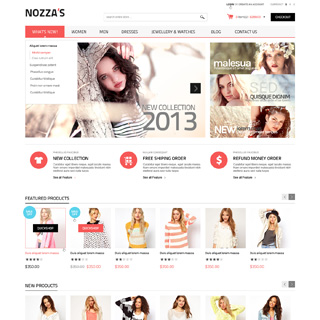 EMThemes - Ecommerce Designer / Developer - Nozza