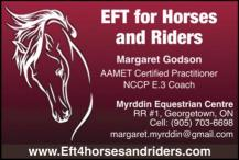 EFT for Horses and Riders