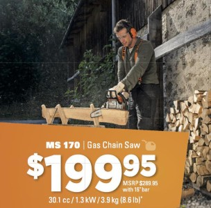 Ms 170 | Gas Chain Saw