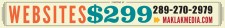 WEBSITES STARTING AT $299