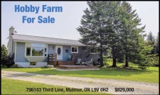 Beautiful treed home and hobby farm nestled on 10 acres that any horse enthusiast would love.