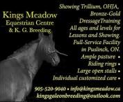 Kings Meadow Equestrian Centre & K. G. Breeding
