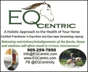 A Holistic Approach to the Health of Your Horse