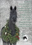 Happy Holidays from Herbs for Horses