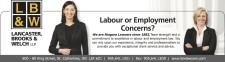 Labour or Employment Concerns?