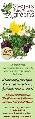 Living Energy!
