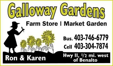 Galloway Gardens Farm Store - Market Garden