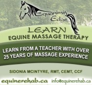 LEARN EQUINE MASSAGE THERAPY