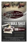 24RD ANNUAL BULL SALE  MONDAY, MARCH 6