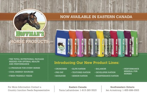 Hoffman's Horse Products  Now Available In Eastern Canada