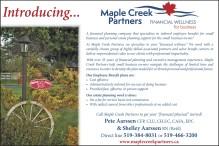 Maple Creek Partners FINANCIAL WELLNESS for business