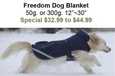 Freedom Dog Blanket
