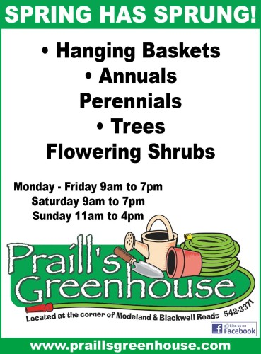 Hanging Baskets • Annuals Perennials • Trees Flowering Shrubs