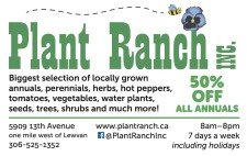 50% OFF ALL ANNUALS at the Plant Ranch